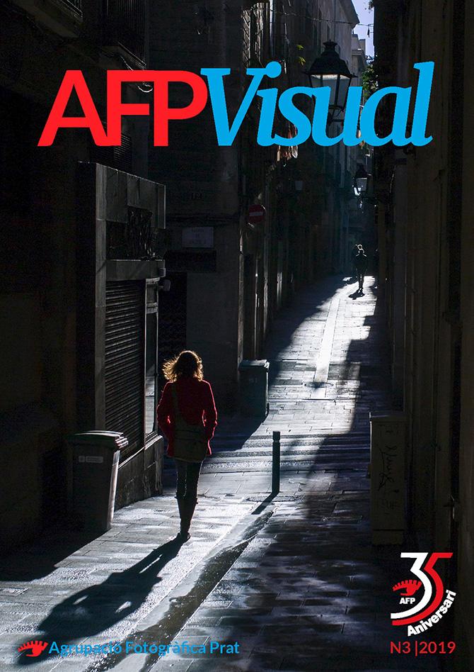 AFPVisual N3|2019